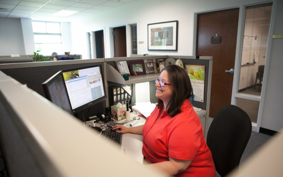 A woman sitting in her office cubicle uses her computer monitor