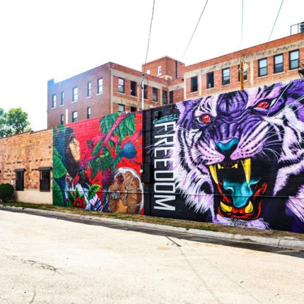 A mural of a purple tiger is painted on a brick wall in downtown Great Falls, MT